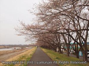 20130320_p3200405r